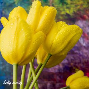 Tulips On Art by Kelly Cushing
