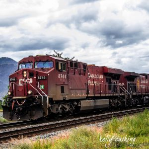 Kamloops Train