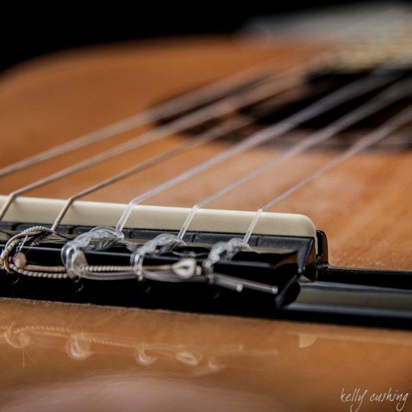 Guitar Bridge by Kelly Cushing