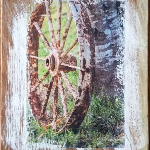 Wheel on Birch Wall Decor by Kelly Cushing