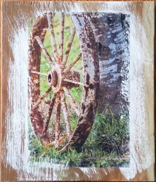 Wheel on Birch Wall Decor by Kelly Cushing