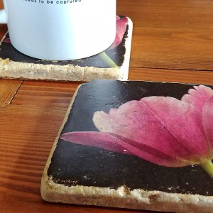 Pink Tulip Coaster by Kelly Cushing