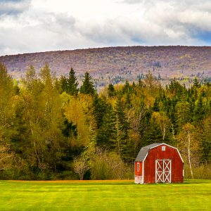 Barn & Mountain by Kelly Cushing