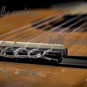 Guitar Bridge with Black Background