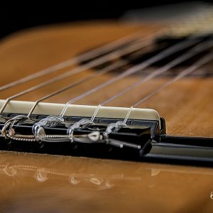 Guitar Bridge on Black by Kelly Cushing