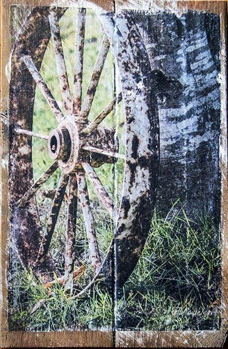 Wheel Against Birch Tree Wall Decor