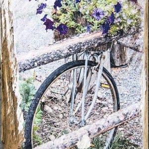 Bike with Purple Flowers Wall Decor