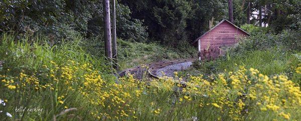 Surrey Track & Shack Wall Decor