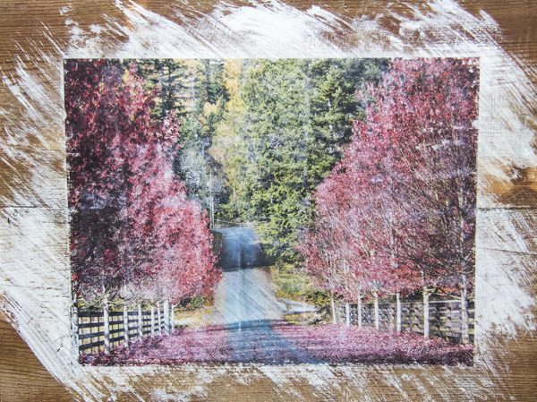 Autumn Country Road Wall Decpr