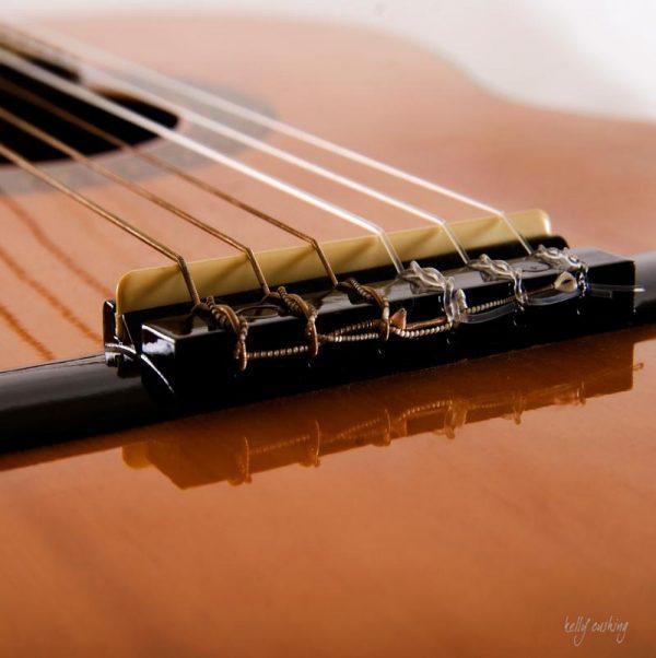 Guitar Bridge on White by Kelly Cushing