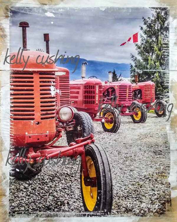 Row of Tractors Wall Art