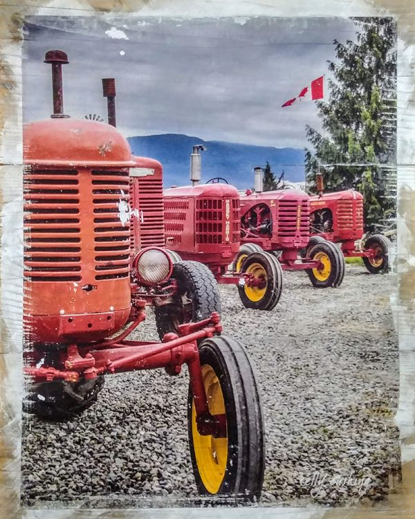 Row of Tractors Wall Decor by Kelly Cushing