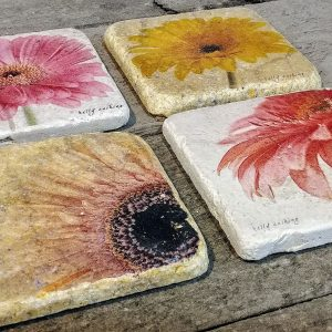 Set of 4 Gerbera Coasters